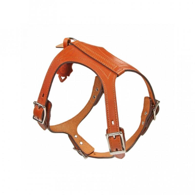 Dogger Шлейка для собак, с тиснением, ширина 2 см, объем 55-65 см