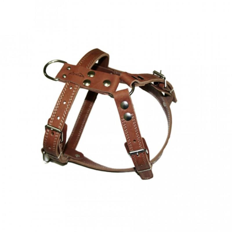 Аркон Шлейка ездовая, ширина 2,5 см, обхват 70-87 см, цвет коньячный