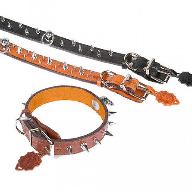 Dogger Ошейник для собак, с фурнитурой, ширина 4 см