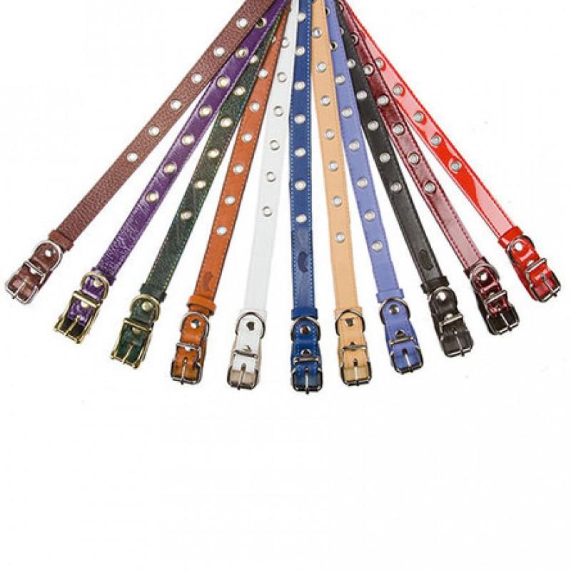 Dogger Ошейник для щенков, цветной, ширина 2 см, длина 35-55 см