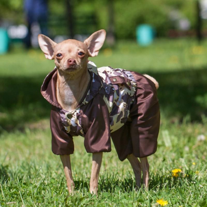 Dogmoda Вилли Комбинезон для собак, унисекс