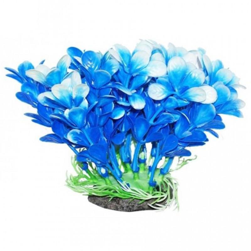 УЮТ Растение аквариумное Людвигия сине-белая, 12 см