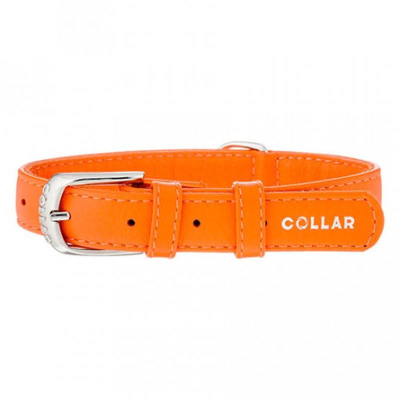 Collar Ошейник для собак,
