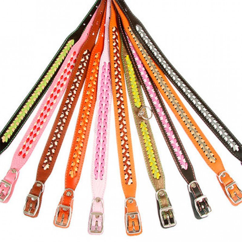 Dogger Ошейник для собак, с расширением и плетением, цветной, ширина 1,2 см, длина 22-35 см