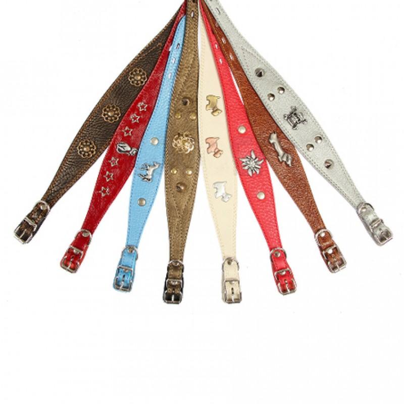 Dogger Ошейник для собак, с фурнитурой, цветной, ширина 2,5 см, длина 45-60 см