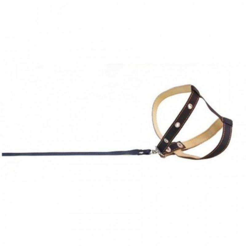 Collar Шлейка с поводком для собак, обхват шеи 26-36 см, обхват груди 34-43 см, ширина 1,2 см, длина поводка 1,3 м, черная