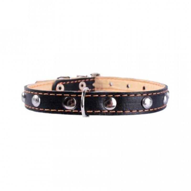 Collar Ошейник для собак двойной, с украшением, ширина 2 см, длина 32-40 см, черный