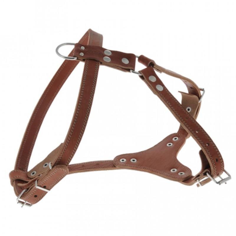 Аркон Шлейка водильная, ширина 2,5 см, обхват груди 80-97 см, цвет коньячный