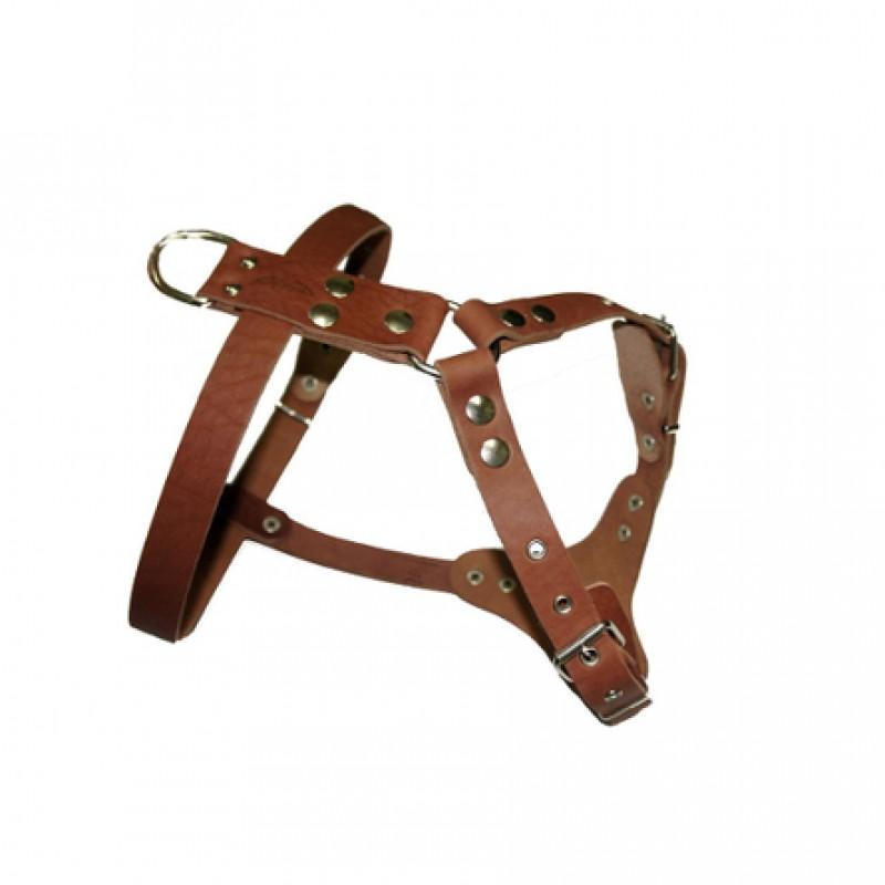 Аркон Шлейка водильная, ширина 2,5 см, обхват шеи 50-68 см, обхват груди 70-87 см, цвет коньячный