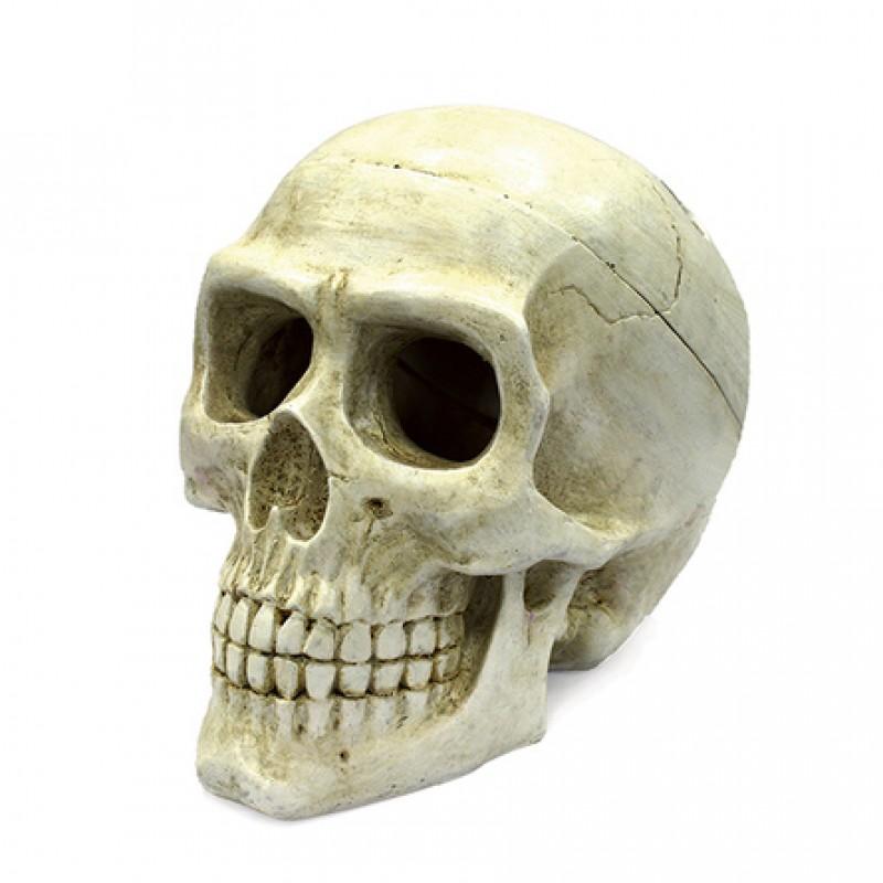 ArtUniq Large Skull Декоративная композиция для аквариума Большой череп, 725 гр